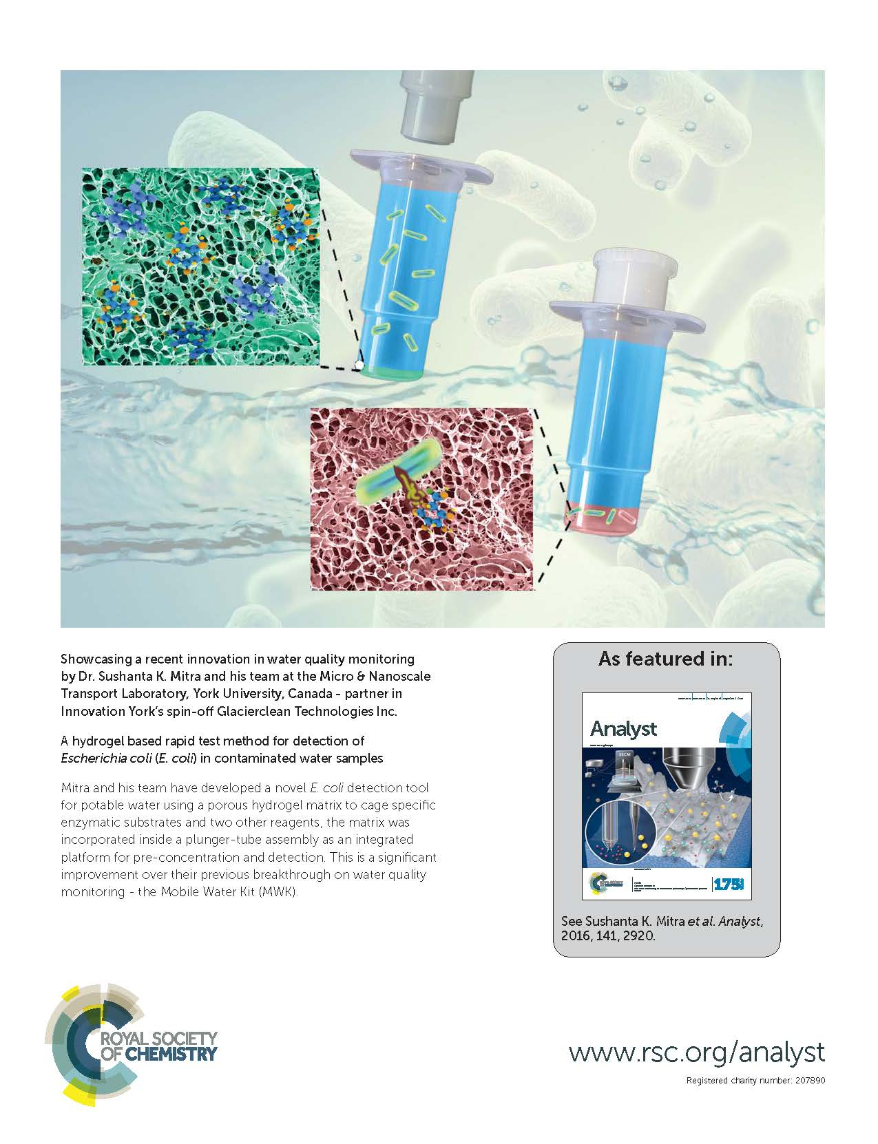 Hydrogel based rapid E. coli detection system, Cover article for Analyst